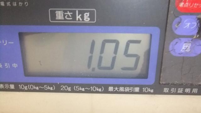 Resize0581
